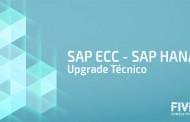 Upgrade técnico do SAP ECC para a versão do SAP HANA e Migração de dados