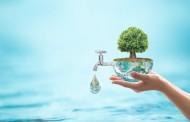 BASF e Solenis concluem a união dos negócios de químicos para papel e água