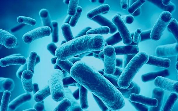 Agência discutiu proposta de guia para avaliação de probióticos