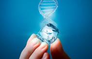 Com DNA voltado para inovação, Grupo Polar surpreende o mercado farmacêutico no mês de maio