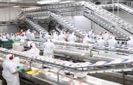 Mitsubishi Electric ensina como aplicar a tecnologia High Speed Cutting (HSC) à Indústria da Manufatura