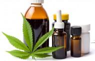 EaseLabs vai usar cannabis na produção de remédios no país