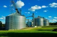 Anvisa abre consulta pública para tratar de contaminantes em alimentos