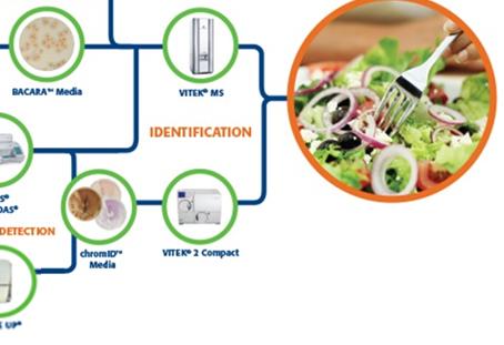 Automação no laboratório de microbiologia é aliada no controle de custos e na melhoria de produtividade
