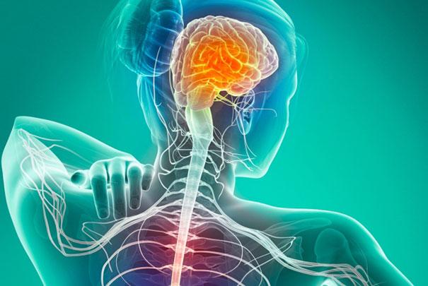 Roche mira recuperação de nervos afetados por esclerose múltipla