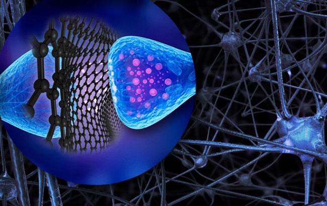 Naves microscópicas de grafeno podem controlar a atividade dos neurônios